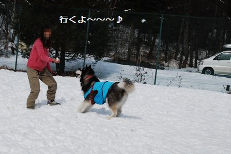2010-2-28blog6.jpg