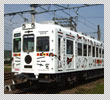 img_tama-train1.jpg
