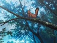 佐助稲荷リスアニメ