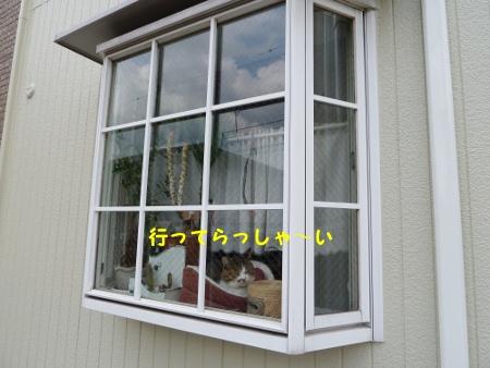 20110430-2.jpg