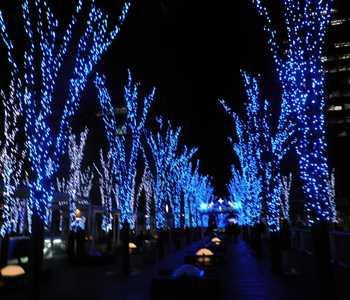 saitama blue light 02  20121213_R