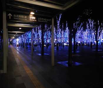 saitama blue light 03  20121213_R