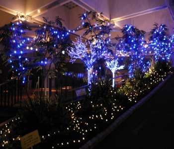 saitama blue light 10  20121213_R