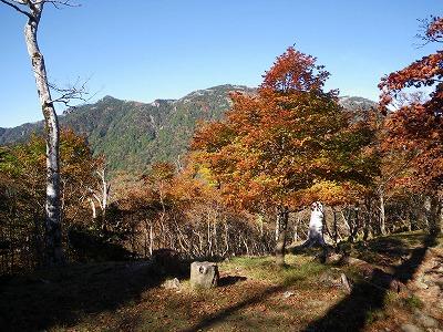 弁天の森の先から見た弥山