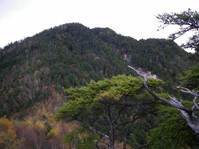 前衛峰から頂上を見上げる
