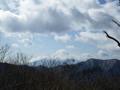 本日の富士山(大沢山から)