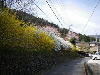 川井駅への途中