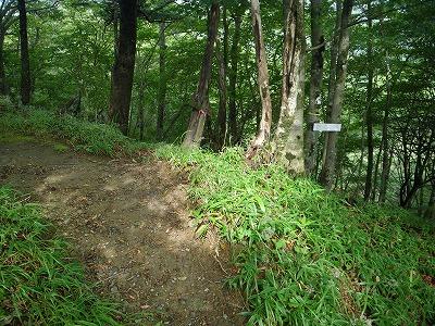 主稜の登山道に合流