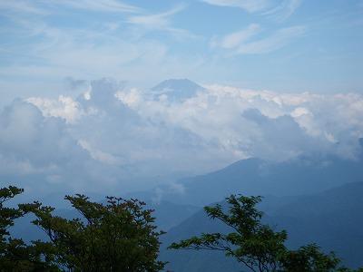 雲の中に富士山が見えた