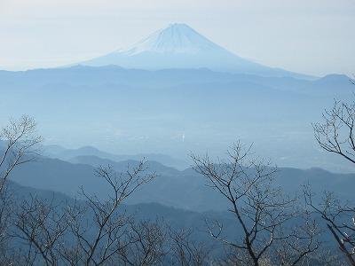 茅ヶ岳からの富士