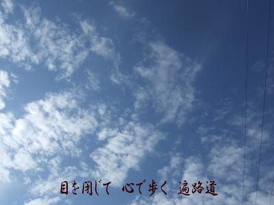 a0641.jpg