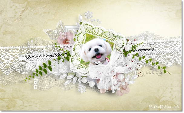 cucciola_designs_sweet_love_pp7.jpg
