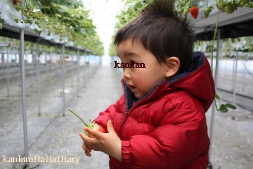 4_20101119082409.jpg