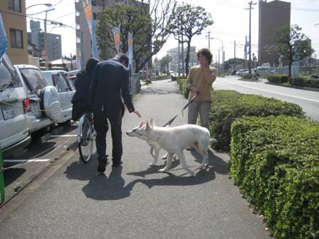 パンジャとリンお散歩2
