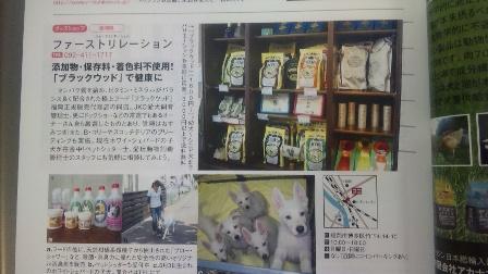 犬吉猫吉 広告
