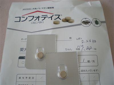 DSCN4896_R1.jpg