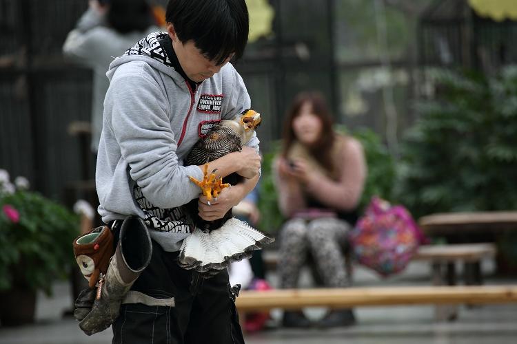 掛川花鳥園15