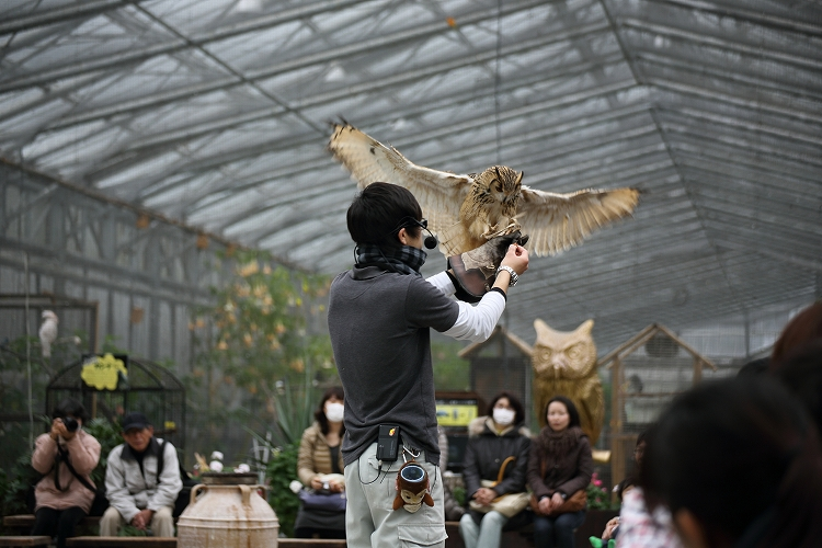 掛川花鳥園07