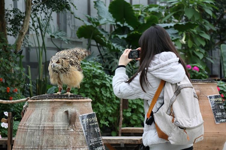 掛川花鳥園31