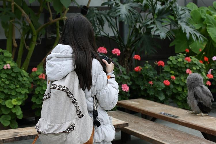 掛川花鳥園28