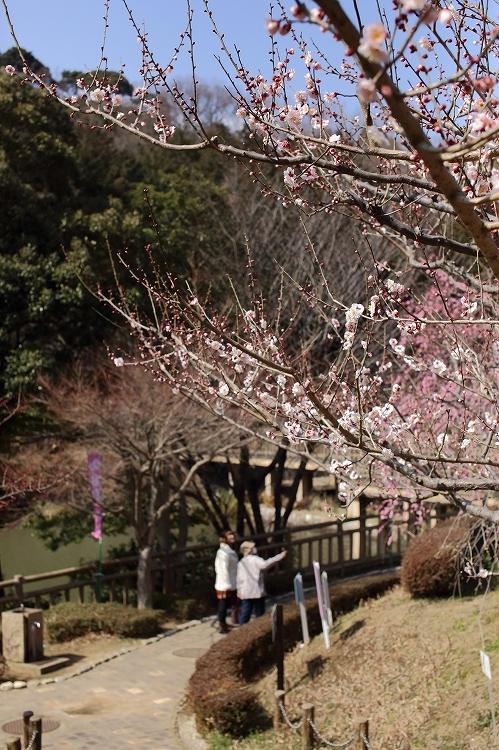 赤塚山公園02