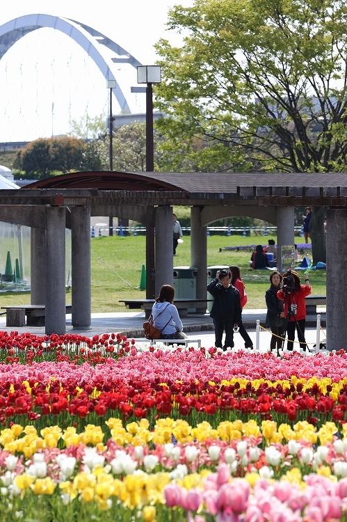木曽三川ちうりぷ06