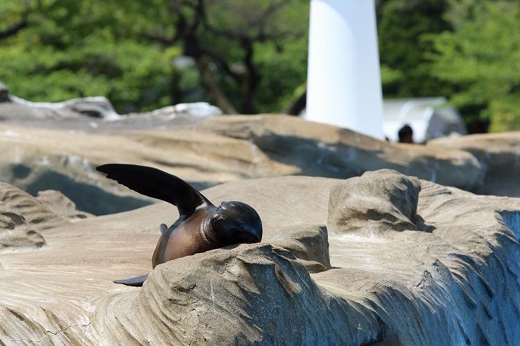 満員御礼東山動植物園23