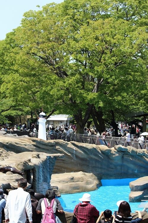 満員御礼東山動植物園21