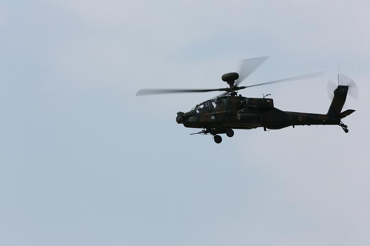 UH-60J_AH-64D_OH-112.jpg
