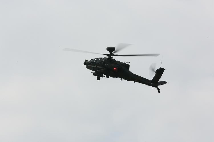UH-60J_AH-64D_OH-113.jpg