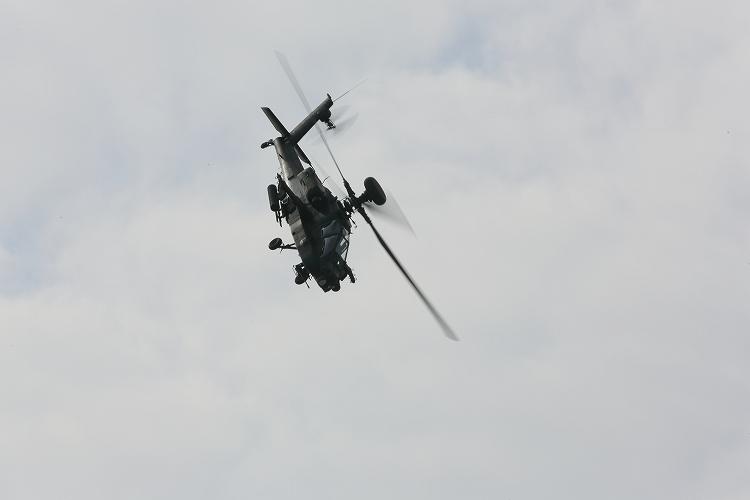 UH-60J_AH-64D_OH-114.jpg