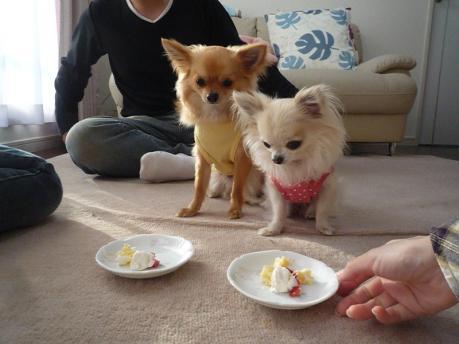 3ケーキでおめでとう