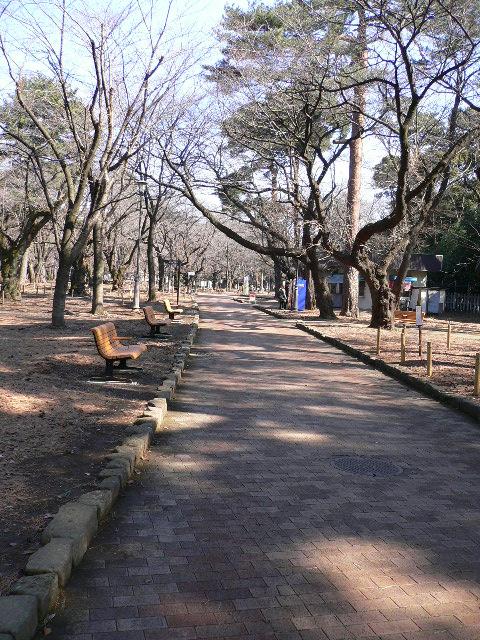 昼間の公園は閑散としています。