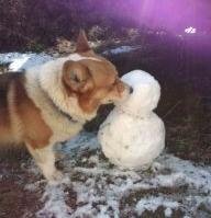 雪だるまウマー