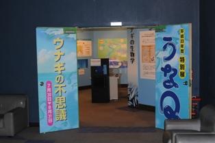 特展2011