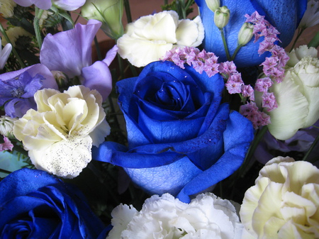 青いバラ。