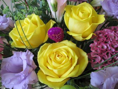黄色いバラ。