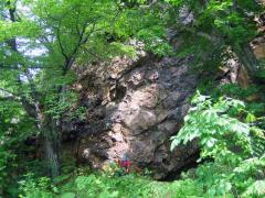 義経岩全体