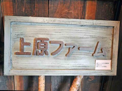 上野ファーム9