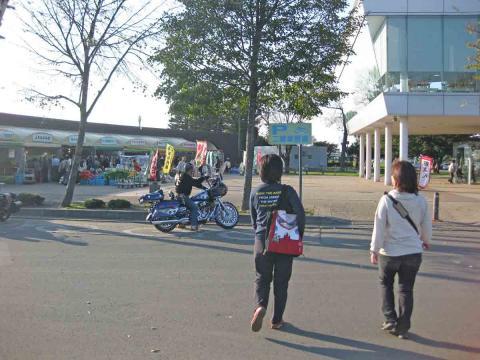 道の駅マオイ2