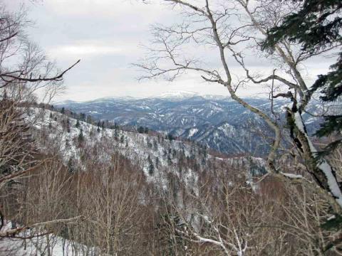 札幌岳から無意根山