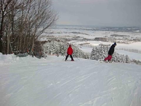 たぬきスキー2