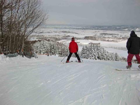 たぬきスキー1