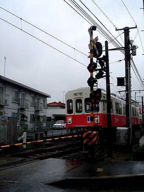 DSC100424-56-1.jpg