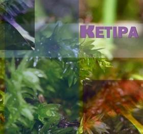 KETIPA (けぱ)
