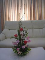 IMG_0638_20130324220745.jpg