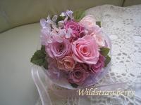 IMG_0717_20130405113823.jpg