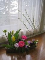hatayama20131.jpg