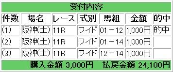 2013 1221 ラジオNIKKEI杯 馬券 ワイド