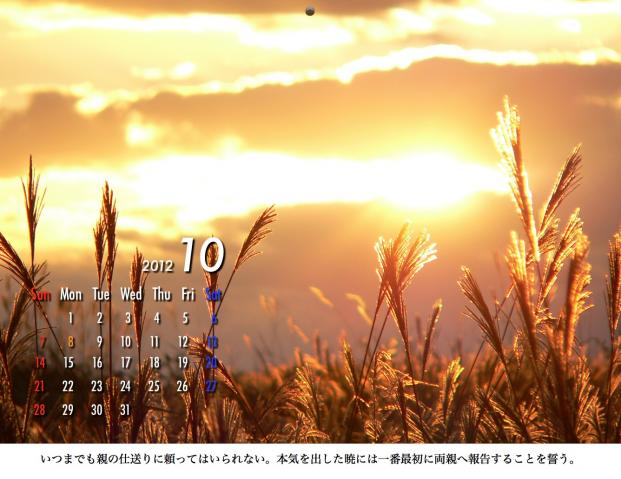 10_20120209221610.jpg